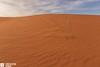 Saudi Arabia - Riyadh - Desert - A Lonely Life In Winter (Sarah Al-Sayegh Photography   www.salsayegh.com) Tags: sunset canon desert kuwait saudiarabia الصحراء landscapephotography السعودية كانون leefilters الرمال canoneos5dmarkiii canon5dmark3 wwwsalsayeghcom sarahhalsayeghphotography infosalsayeghcom