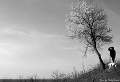 Somewhere... (Paweł Pablo Nowak) Tags: sky dog man tree 35mm sony horizon alpha