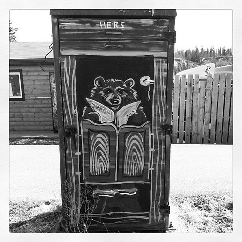 Bear outhouse decorates a metal container in downtown #yxy #yukon