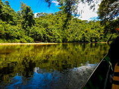 DSCN0622 (vhenryz) Tags: park trip trees sky cloud reflection nature water clouds forest river boat reserve calm national mangrove jungle vehicle brunei ulu temburong