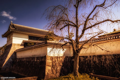 Okazaki Castle Gate (Alexander.W.Photography) Tags: world travel red summer travelling green nature japan japanese ancient nikon view ngc culture buddhism best  nippon tradition shinto japon nihon japani 2014 japn  honshu 2016 shintoism 2015 d610