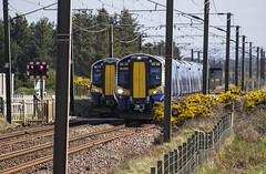 380108 1K44 380113 1K39 (Rossco156433) Tags: electric train outside scotland siemens scotrail emu motor irvine levelcrossing ayrshire nederlandsespoorwegen northayrshire desiro gailes abellio class380 380113 380108