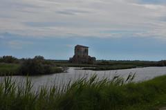 comacchio - saline (ecordaphoto) Tags: nature photo nikon zoom fiume natura saline emiliaromagna comacchio oasi 55300 d5100