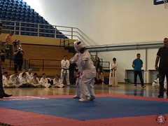 stefanou_15_5_2016_knockdown_250