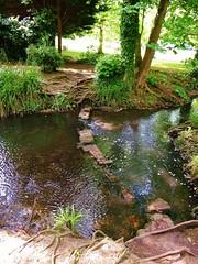 stepping stones (helenoftheways) Tags: parks rivers steppingstones kelseypark water green