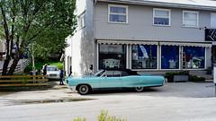 DSC05615.jpg (iheresss) Tags: classic sc classiccar f14 sony voigtlander pontiac 40mm lofoten nokton bonneville softtop leknes a7r