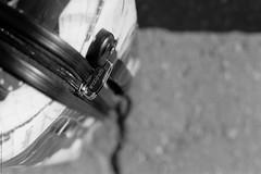 snapshots (Anton Zabermach) Tags: blackandwhite bw film analog 35mm dof bokeh fujifilm nikkor acros nikonfe2 selfdeveloped microphen 50mmf18ai