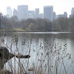 "newyork2012 (94) <a style=""margin-left:10px; font-size:0.8em;"" href=""http://www.flickr.com/photos/44105515@N05/6850474124/"" target=""_blank"">@flickr</a>"