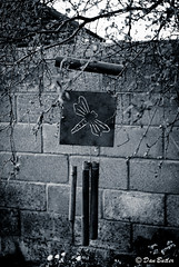 Wind Chimes B&W (Dan Butler Photo) Tags: blackandwhite bw garden blackwhite windchimes windchime