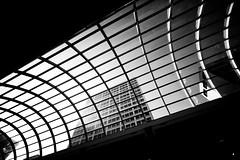Slide Over to You, Plate 2 (Thomas Hawk) Tags: bw usa architecture texas unitedstates 10 unitedstatesofamerica houston fav20 galleria thegalleria fav10 harriscounty thegalleriahouston galleriahoutson