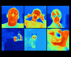 93 of 365  Thermal Imaging (gardengeorgie) Tags: me cat project image scanner nick harry kettle mug infrared april 365 thermal tis fluke 2012 366 thermography whichiswhich colourfulisntit