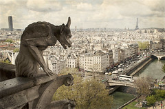 Gallery of Chimera and the gargoyles of Notre-Dame (Marco Boekestijn) Tags: life street city trip travel light urban brown holiday paris france streets tower tourism statue seine architecture landscape boat spring nikon women iron europe gallery view 5 balcony postcard eiffeltower rusty landmark visit montmartre tourist panoramic tourists days notredame traveller toureiffel april marco monsters guide greetings sight frankrijk gargoyles notre dame garedunord chimera beatiful parijs attraction 2012 urbanlandscape metropole ladefence panoramique theeiffeltower quartierlatin travelphotography cityoflight cityoflove d80 theironlady welcometoparis boekestijn parisgeotagged galleryofchimera