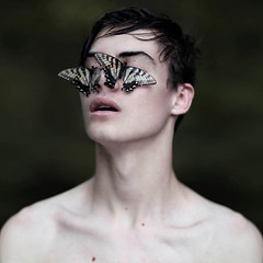 wide eyes behind beautiful lies (brianoldham) Tags: boy butterfly butterflies ignorance brianoldham wideeyesbehindbeautifullies