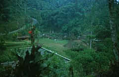 Bali, 1976 (Coyolicatzin) Tags: bali indonesia besakih indonesi indonesien sebatu  indonsie indonezja indoneesia  endonezya indonezija    indonzia indonezia indnesa  indonzija indonezio indoneziya indonisa