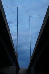 Imbalance (Robert_Sherman) Tags: bird highway pole poles imbalance