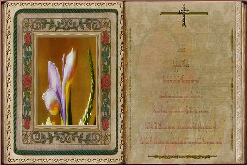 Evangelio según San Mateo 12,38-42. Obra Padre Cotallo