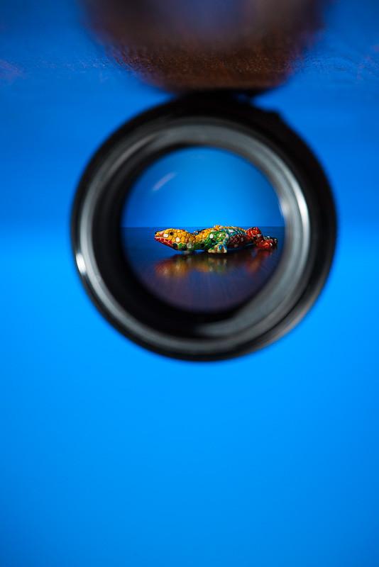 Through-the-Lens (34/52)