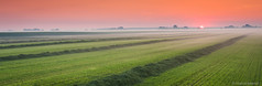 MK_120725_0047-2 (Marcel Kerkhof) Tags: trees light red summer sky sun sunlight color tree green nature netherlands beautiful field grass rural sunrise landscape outdoors countryside scenery horizon harvest meadow scene row land environment groningen agriculture
