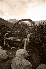 Mr. Ol' Chair (Pflanze mit Hut) Tags: wood mountains sepia america landscape colorado berge amerika holz landschaft sessel oldchair
