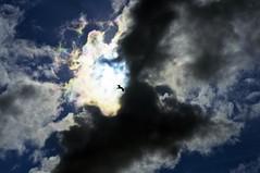 Rainbow clouds or an Angel? (C.M_Photography) Tags: light sky sun bird clouds rainbow