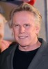 Gary Busey World premiere of 'Swing Vote' held at the El Capitan Theater - Arrivals Hollywood, California