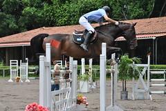 El Chino Herber Tobar, competencia FEI 19 de agosto de 2012 (Cristina Bruseghini de Di Maggio) Tags: caballos fei salto pista chino campeon tobar competencia herber caballeria obstaculo