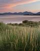 Seilebost, Harris (Douglas Griffin) Tags: scotland harris marramgrass canon24105f4l seilebost 4x5crop canoneos5dmarkii lee09ndhardgrad