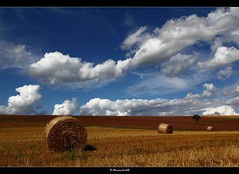 Beautiful day in late summer (bernd obervossbeck) Tags: light summer sky nature field clouds licht sommer natur harvest feld straw himmel wolken stroh ernte latesummer strohballen sptsommer baleofstraw mygearandme mygearandmepremium mygearandmebronze