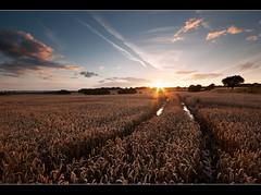 A Long Day, Done. (A-D-Jones) Tags: road old sky sun field st set clouds farm crop helens wigan merseyside billinge garswood