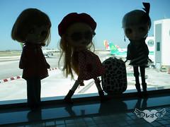 Travel dollies