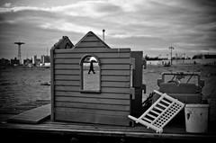 Sandy and I: A difficult relationship (Giovanni Savino Photography) Tags: newyork beach brooklyn coneyisland aftermath hurricane streetphotography magneticart ©giovannisavino hurricanesandy