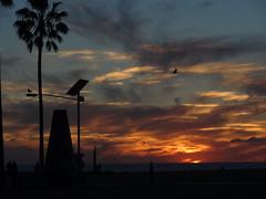 VENICE BEACH CALIFORNIA JAN 6, 2014 (NameOnRice.com) Tags: california santa venice usa beach america los angeles police claus lapd