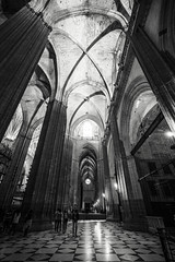 Immense Height (BoXed_FisH) Tags: travel blackandwhite bw church monochrome architecture mono sevilla andaluca spain europe cathedral sony religion wideangle monotone seville unesco tall es placesofinterest sonyzeiss sonya7 sel1635z sony1635mmvariotessartfef4zaoss sonyzeiss1635f4oss