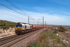 Class 77037 ECR (Enrico Bavestrello) Tags: railroad france nikon rail railway zug freighttrains francia ecr freighttrain ferrovia ferrovie class77 saintchamas eurocargorail nikond5000 class77037 class77ecr