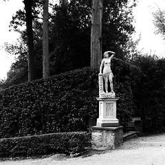 italy #florence #boboli #boboligarden #palazzopitti #pitti... (ER-Photo) Tags: italy statue contrast garden florence spring pitti boboli blackandwhitephotography gardendesign palazzopitti boboligarden uploaded:by=flickstagram instagram:photo=12209937777673708682204679691