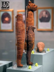 3weemummies2 (Internet & Digital) Tags: mummy mummified cats ibis victorian mummifiedcats thoth hawk sacrifice ritual ancient ancientegypt offerings god isis horus osirus egypt giftstothegods exhibition glasgow kelvingrovemuseum animalmummycatmummygiftstothegodsexhibitionglasgowkelvingrovemuseummummifiedcatsancientegyptegyptcroccodilecatheadibisvictoriansacrificeritualancientofferingsgodc21troyidmedia