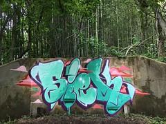 siek-rawconcrete (SIEKONE.ID) Tags: art graffiti crew kts graffitiart gak siek flyid pfe paradiseart