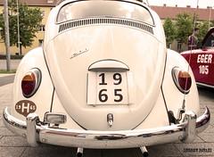 Kaf006 (Andrew Pataki/prodigalphoto.com) Tags: history vw volkswagen beetle restored oldtimer 1965