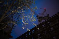 42 (Maj. Major Major Major) Tags: city light urban london nature night nikon crane united flash kingdom d800 2016 35mm18 likeamoth michalrohal