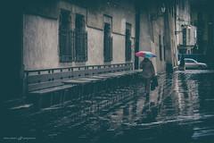 Rain in the city (dalibor.papcun) Tags: street city urban rain umbrella walk citylife streetphotography koice stphotography