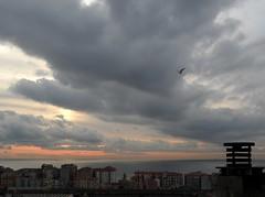 nuvole (fotomie2009) Tags: italy clouds italia nuvole liguria savona balcorama
