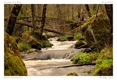 La monne [Olloix] (BerColly) Tags: longexposure bridge light france nature river google flickr riviere lumiere pont auvergne puydedome poselongue monne olloix bercolly