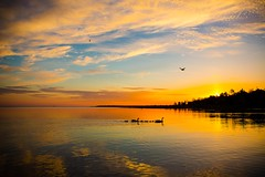 Early spring morning on lake huron in gobles grove in Port Elgin up with the sunshine and the birds. (101.7 The ONE) Tags: sunrise lakehuron saugeenshores beachsunrise cottagelife pamelamclellanzmija cottagesunrise