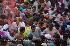 Barsana Nandgaon Lathmar Holi Low res (27 of 136) (Sanjukta Basu) Tags: holi festivalofcolour india lathmarholi barsana nandgaon radhakrishna colours