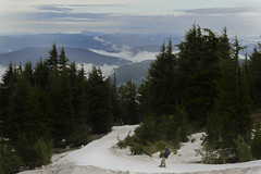 Foggy June Ski Day (capemountain) Tags: snow fog mthood snowboarder