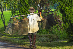 ChiangRai_8129 (JCS75) Tags: canon thailand fishing asia asie chiangrai thailande