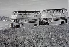 Alien Invasion Buses. (ManOfYorkshire) Tags: hemelhempstead hertforshire film movie 1957 quatermass 2 bus buses alien invasion transport workers human fields building work new town television used markings repainted