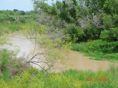 "Nueces River • <a style=""font-size:0.8em;"" href=""http://www.flickr.com/photos/77680067@N06/6881450736/"" target=""_blank"">View on Flickr</a>"