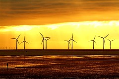 Sustainable farming (david.hayes77) Tags: sunset silhouette reflections farming windfarm gormley sustainable crosby merseyside contrajour crosbybeach