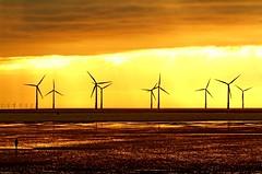 Sustainable farming (david.hayes77) Tags: sunset silhouette reflections farming windfarm gormley sustainable crosby merseyside contrajour crosbybeach